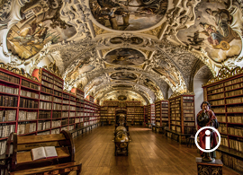 Ronin: Beautiful old Library
