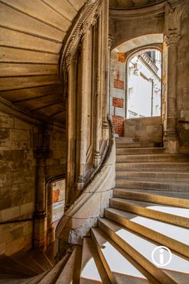 Ronin: Castle Steps