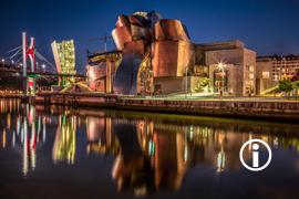 Ronin: Bilbao at Night